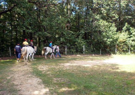 Jahanje na konjima nikoga nije ostavilo ravnodušnim