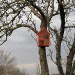 Izrada staništa za kukce