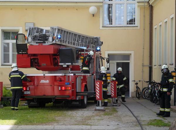 Vatrogasci su pokazali svoju brzinu i spretnost u gašenju požara